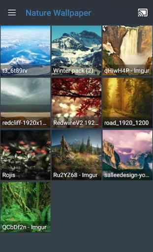 All Screen (Chromecast, DLNA, Roku, Fire TV) 4