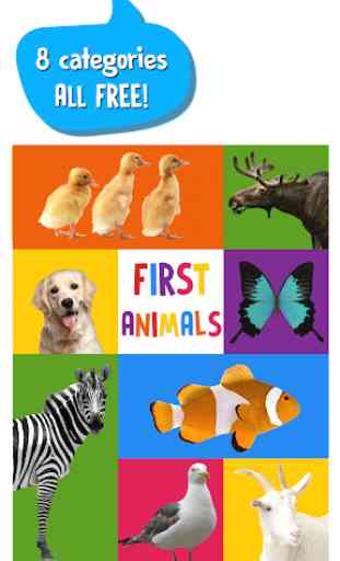 First Words for Baby: Animals 1