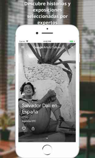Google Arts and Culture (iOS/Android) image 4