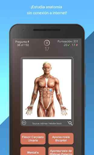 Anatomist - Anatomía Cuestionario Juego 4