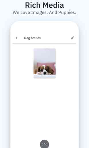 Space: Spaced Repetition System for Flashcards 2