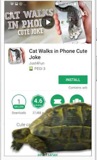 Tortuga en teléfono de broma 2