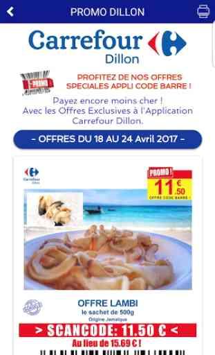 Carrefour Dillon Génipa Cluny 4
